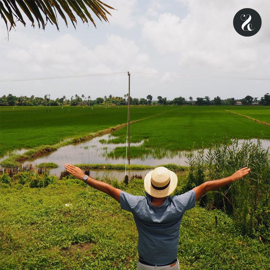 arrozales Kerala India viaje guía
