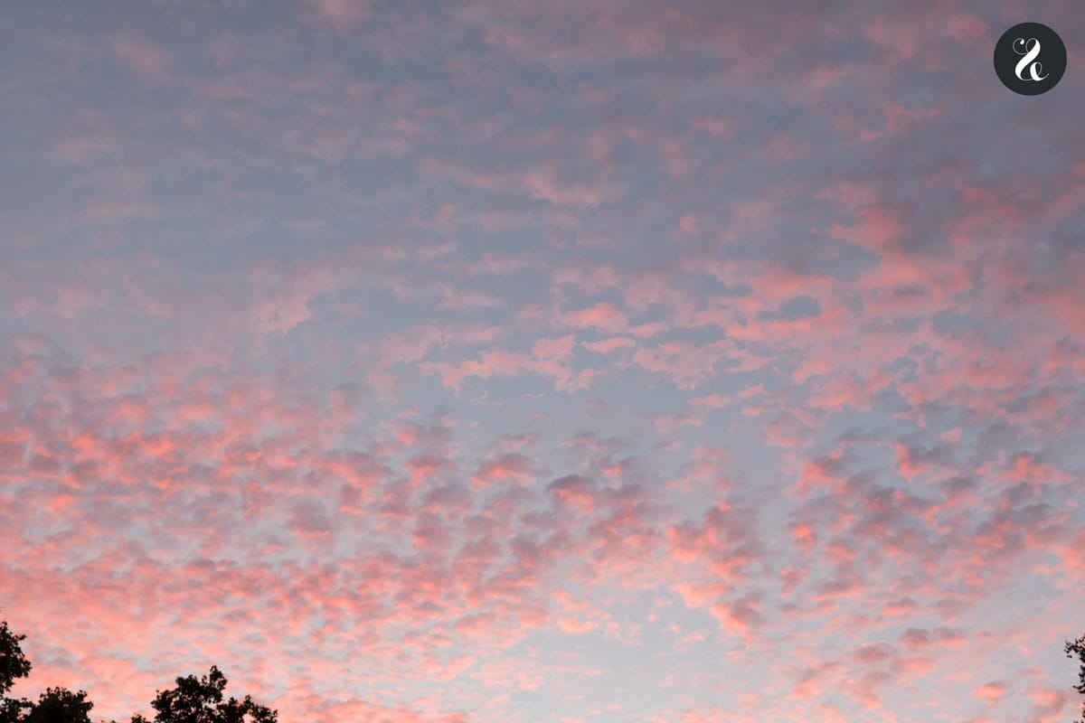 puesta sol terraza Florida Retiro Madrid