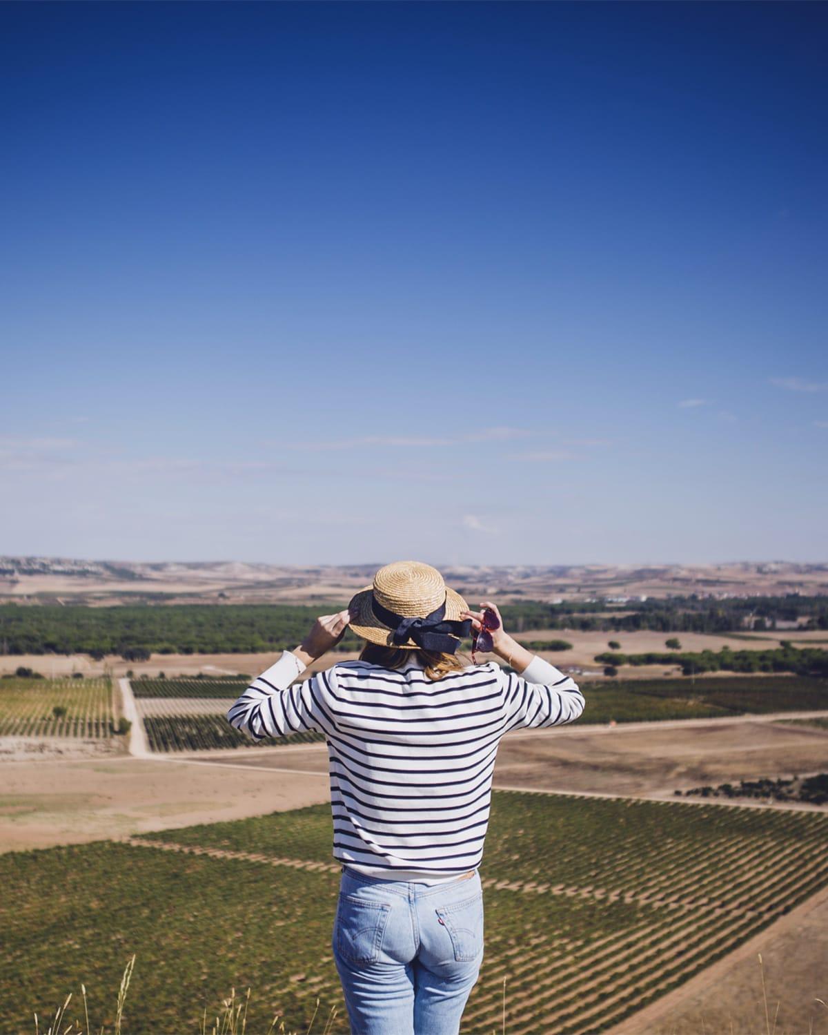 Guía comer y dormir Ribera del Duero